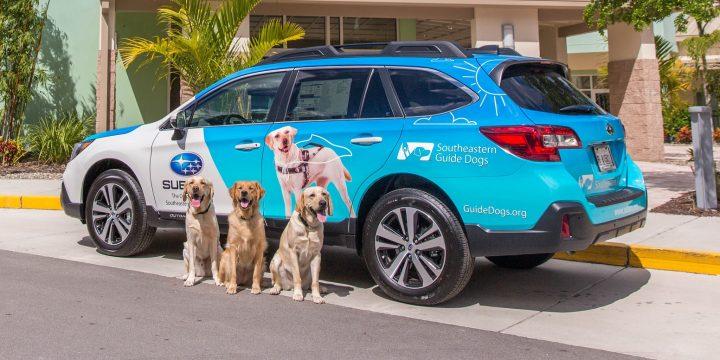 AZ AUTOTRADER listáján, a kutyabarátok választása szerint a 10 legjobbak között szerepel a 2020-as SUBARU OUTBACK